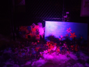 children's colourful handmade flowers and landscapes lit up on a snowy lawn